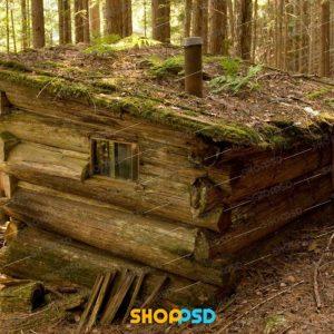 کلبه جنگلی | کلبه چوبی